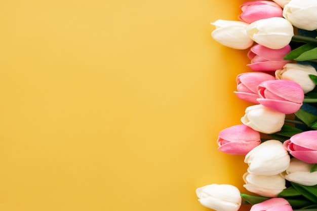 Conheça os Principais Tipos de Flores