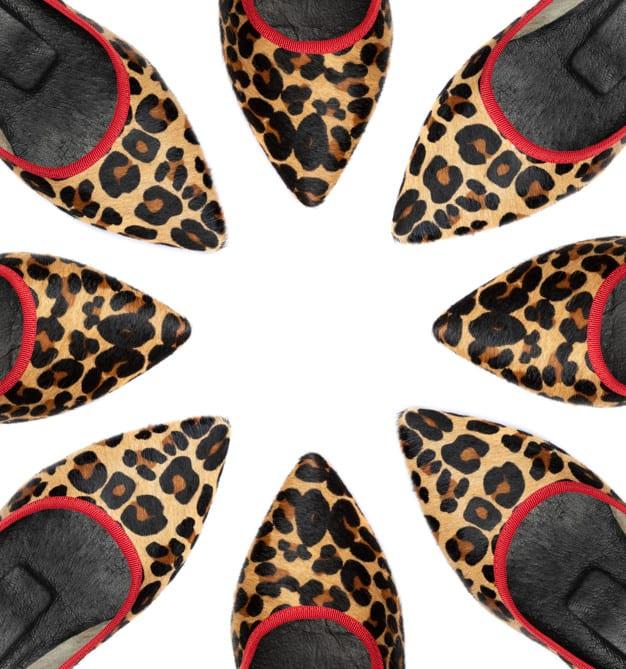 Sapato de oncinha
