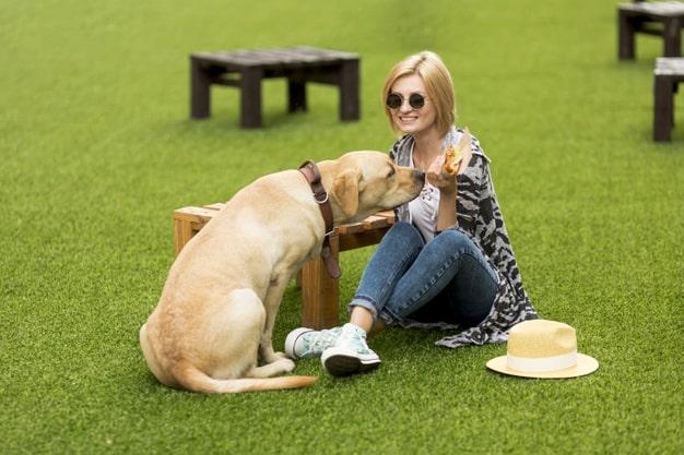 mulher com cachorro