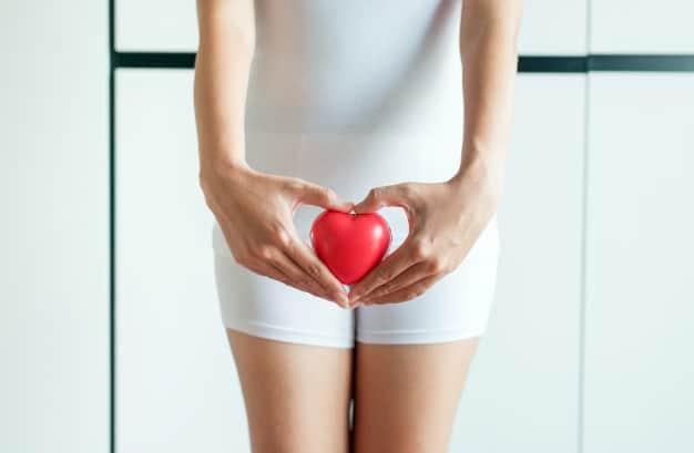 Folículo Ovariano - O que é? Qual a função?