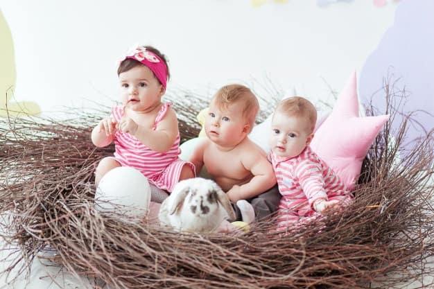 bebês com coelho