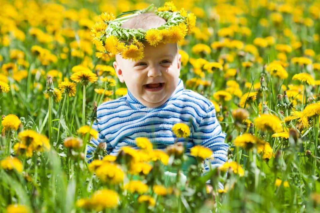 bebês fofos em meio a flores amarelas