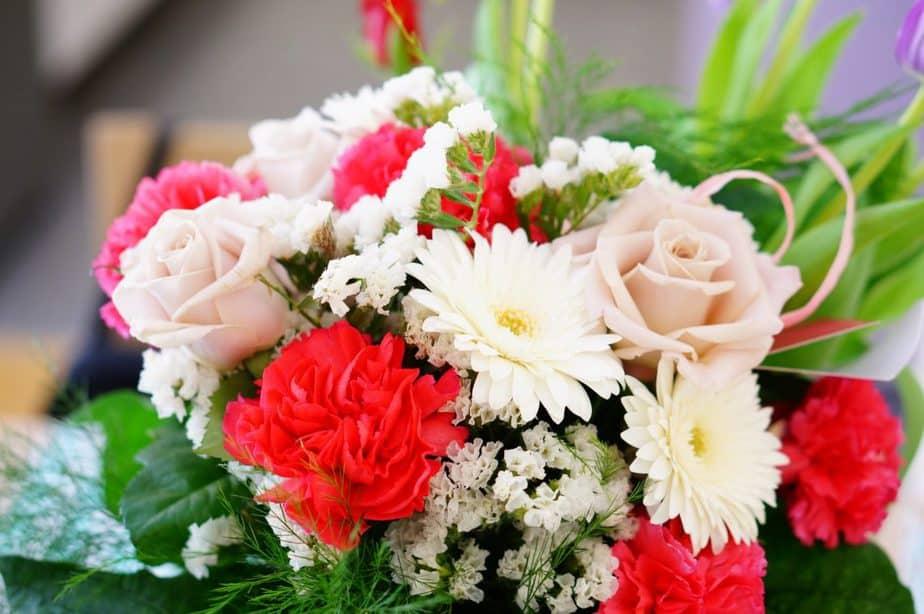 nomes de flores rosas cravo estática cravo margaridas buquê